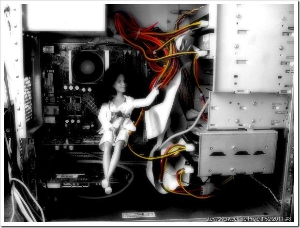 sternchenwelt.de Projekt 52 2011 #8