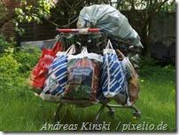 372726_web_R_by_Andreas Kinski_pixelio.de